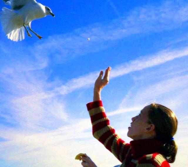 My niece on the same morning, feeding the gulls.
